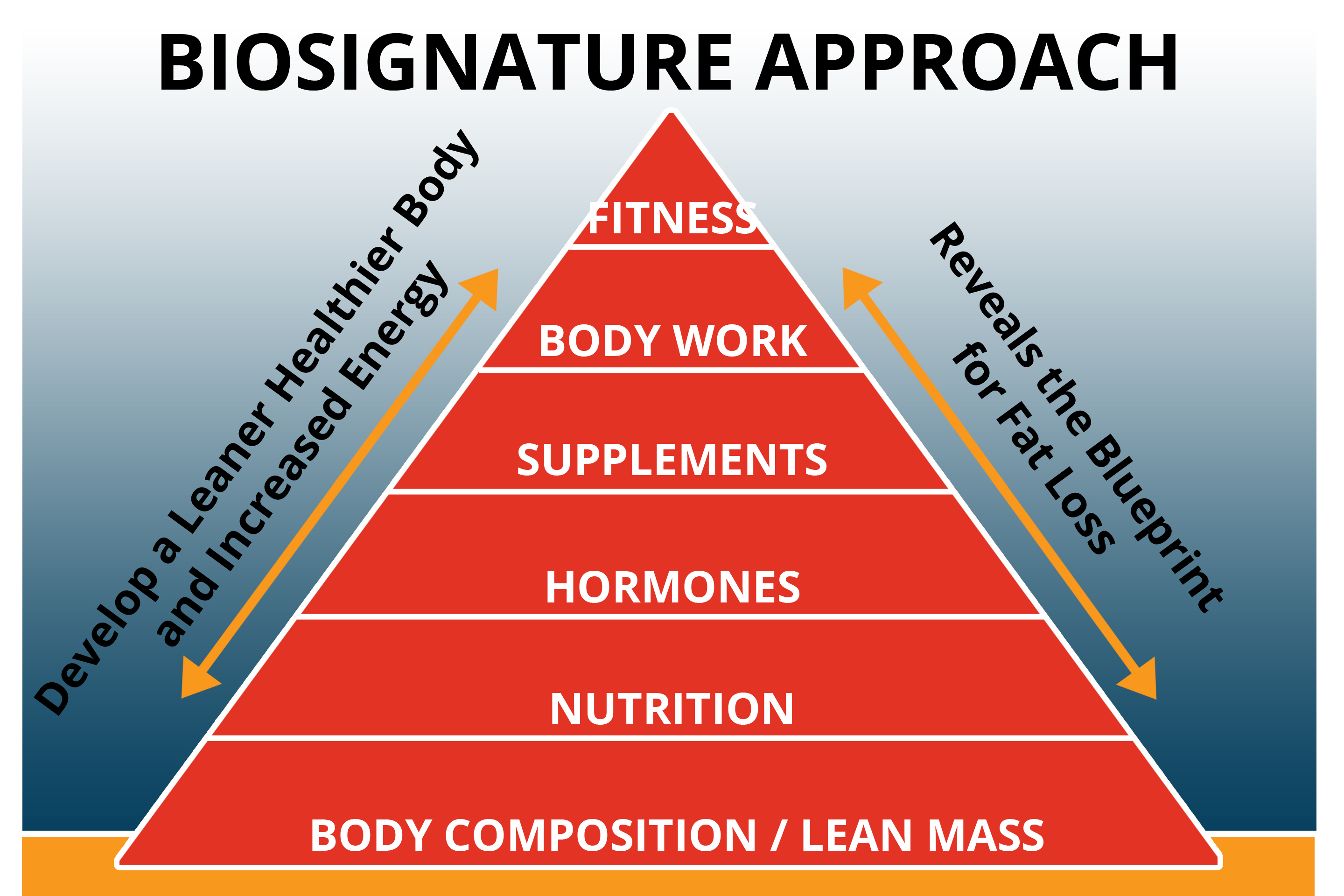 NLC-Triangle-BioSignature-approach Program design for structural imbalances